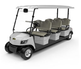2 Seater Electric Golf Cart DG-M6