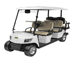 4 Seater Electric Golf Cart DG-M4+2