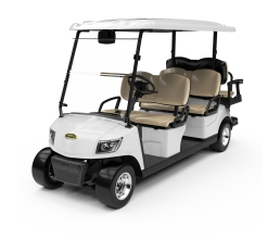 Electric Lifted Golf Cart  DG-M4+2