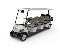 Electric Lifted Golf Cart  DG-M6+2