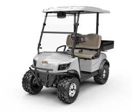 Electric Lifted Cart  DH-M2+Cargo box