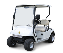 2 Seater Electric Golf Cart DG-C2