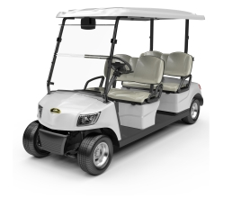 4 Seater Electric Golf Cart DG-M4